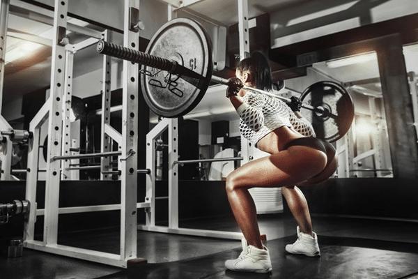 meilleure cage à squat