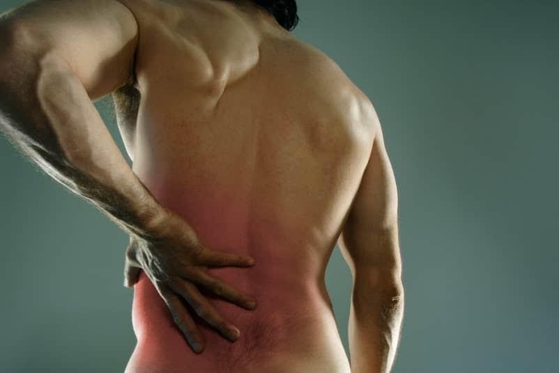Whey protéine danger reins