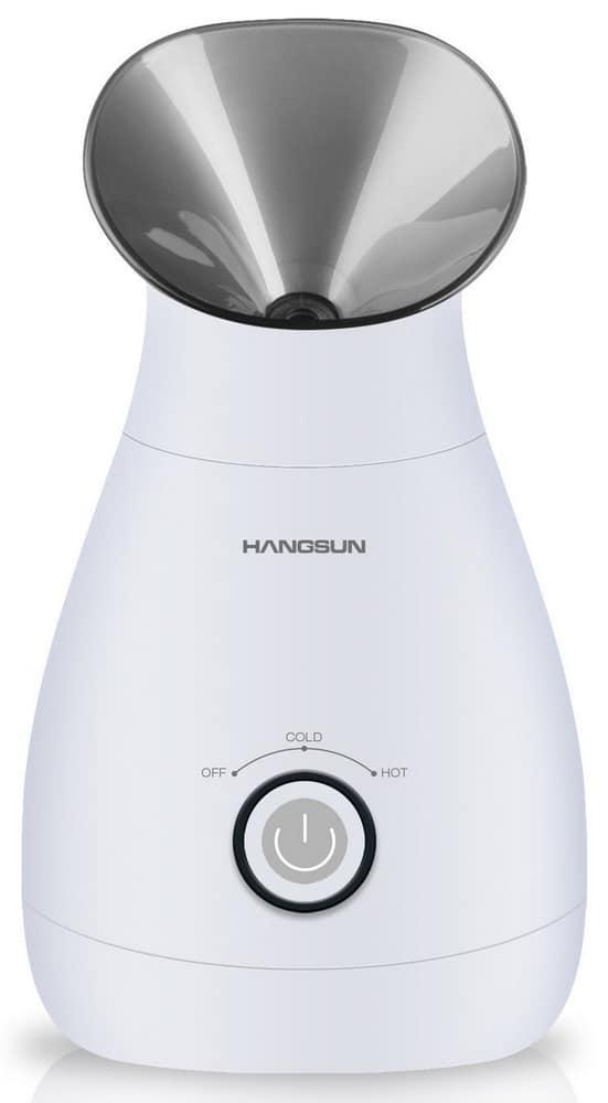 Sauna facial ionique Hangsun FS100