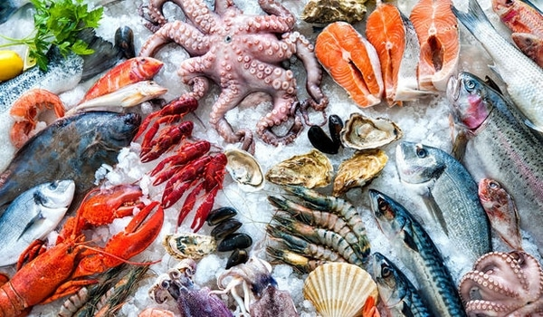 Aliments riches en protéines poissons