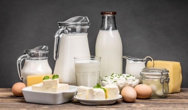 Aliments riches en protéines produits laitiers