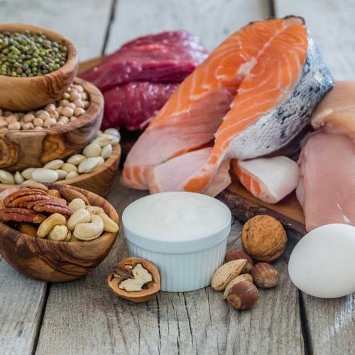 Aliments riches protéines