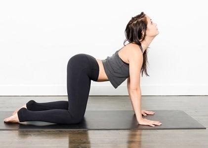 Exercice décompression colonne vertébrale yoga chien