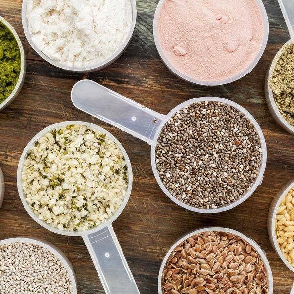 Meilleure protéine végétale