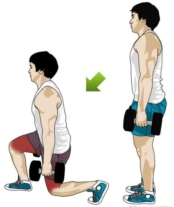 Musculation haltères fente avant