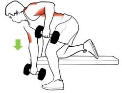 Musculation haltères rowing