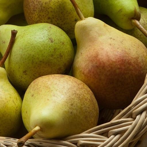 Aliments perdre ventre fruits poire