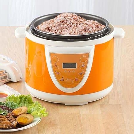 Meilleur cuiseur riz