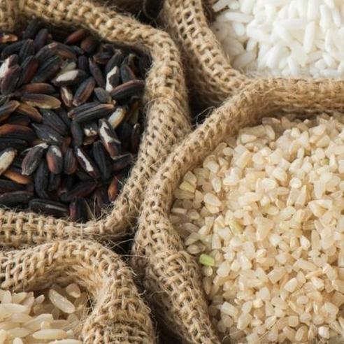Meilleur riz