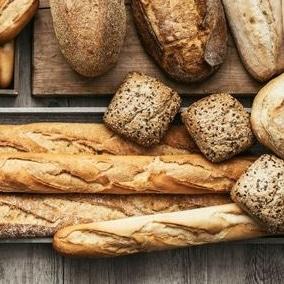 Meilleurs livres recettes pain