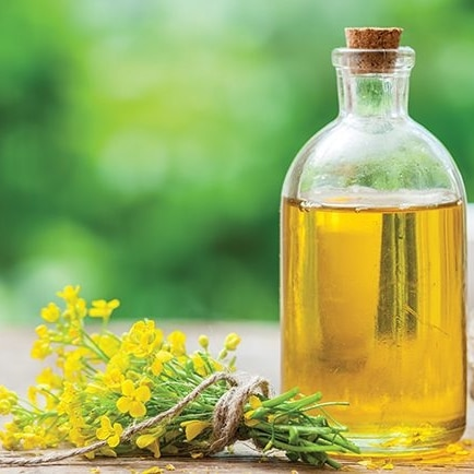 Aliments riches Oméga 3 huile colza
