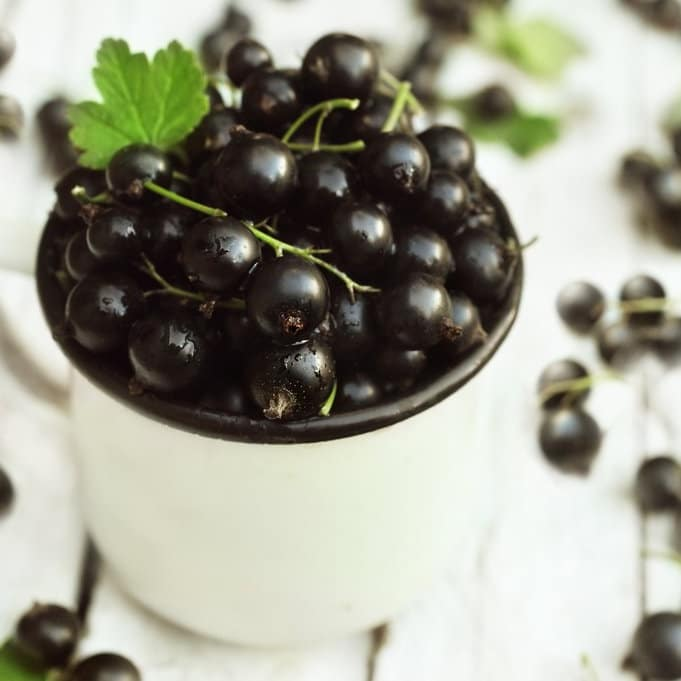 Vitamines minéraux utiles organisme vitamine C
