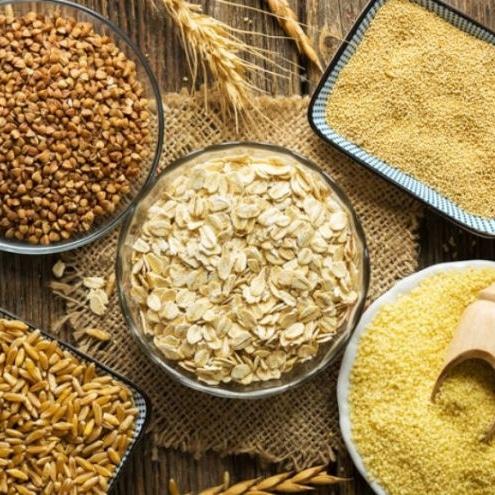 Vitamines minéraux utiles organisme zinc