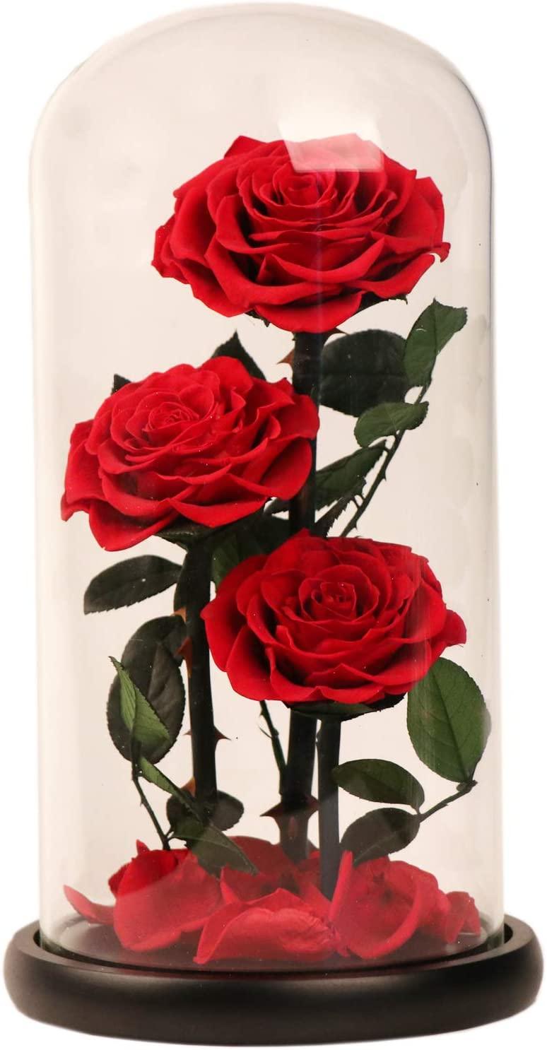 rose stabilisée infinite flower